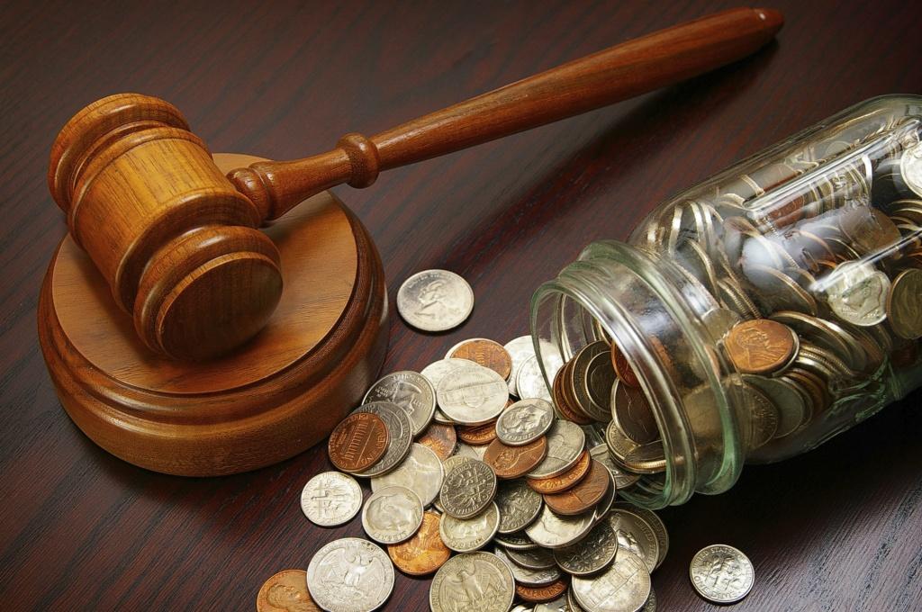 Алименты в фиксированной сумме назначаются, когда нет возможности проверить доход